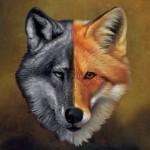 wolf-fox